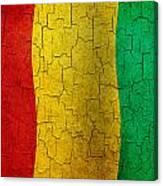 Grunge Guinea Flag Canvas Print