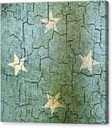 Grunge Micronesia Flag Canvas Print