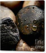 Rocks And Drops Canvas Print