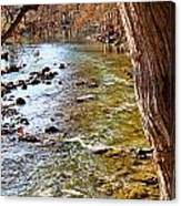 Guadalupe River View Canvas Print