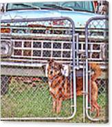 Guarding The Ford Canvas Print