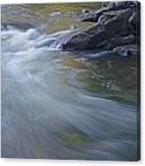Gull River In Fall Canvas Print