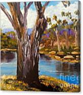 Gum Trees Of The Snowy River Canvas Print