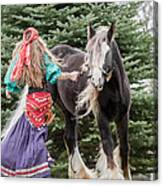 Gypsy Vanner Dance Canvas Print