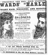 Hair Restorative, 1891 Canvas Print