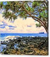 Hala Trees At Ka'anae Point Canvas Print