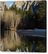 Half Dome And Cottonwoods Reflected In Merced River  Canvas Print