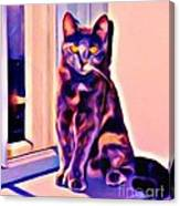 Halifax Cat Canvas Print