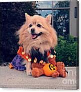 Halloween Dog Canvas Print