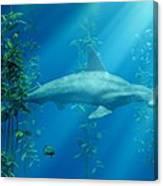 Hammerhead Among The Seaweed Canvas Print