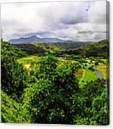 Hanalei Valley Canvas Print