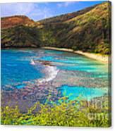 Hanauma Bay In Hawaii Canvas Print