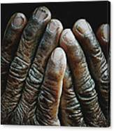 Hands Of Time 2 Canvas Print