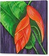 Hang Loose Canvas Print