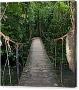 Hanging Bridge Canvas Print
