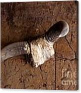 Hanging Cow Horns-africa Canvas Print