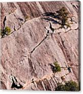 Hanging On To Dear Life - Enchanted Rock State Natural Area - Fredericksburg  Llano Canvas Print