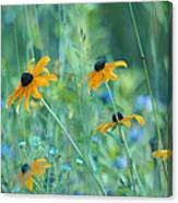 Happiness Is In The Meadows Canvas Print