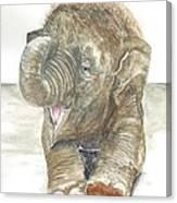 Happy Baby Elephant Canvas Print