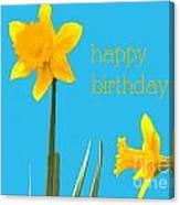 Happy Birthday Jonquils Canvas Print
