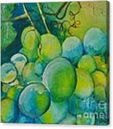 Happy Bunch Canvas Print