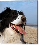 Happy Dog Canvas Print