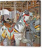 Happy Grey Pony Canvas Print