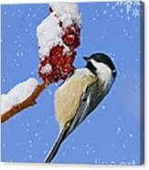 Happy Holidays... Canvas Print