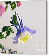 Happy Little Columbine Canvas Print