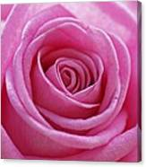 Happy Pink Canvas Print