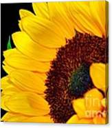 Happy Sunflower Canvas Print