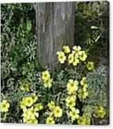 Happy Yellow Flowers Canvas Print