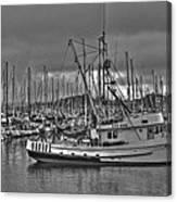 Harbor And Marina Monterey 2 Canvas Print