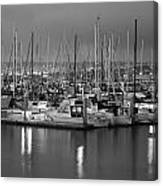 Harbor Lights II Canvas Print