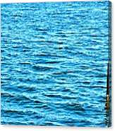 Harbor Markers Canvas Print