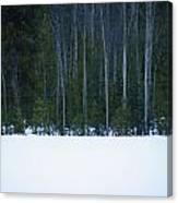 Hard Line Winter Canvas Print