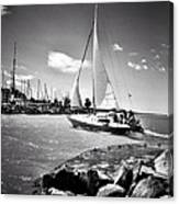 Hard Sailing Canvas Print
