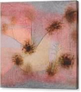 Hardy Plants Canvas Print