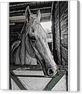 Harley In The Barn Canvas Print