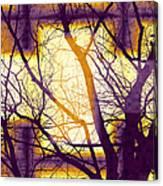 Harmonious Colors - Violet Yellow Orange Canvas Print