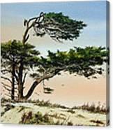 Harmony Of Nature Canvas Print