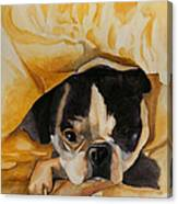 Harold's Bed Canvas Print