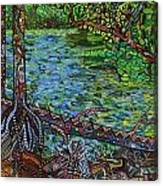 Harpeth River Canvas Print