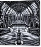 Harry Potter Meets Escher And Darwin. Canvas Print