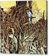 Harvest Art Canvas Print