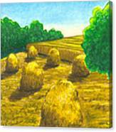 Harvest Gold Canvas Print