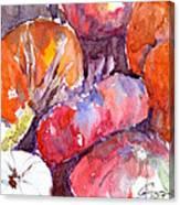 Harvest Pumpkins Canvas Print