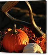 Harvesting For Thanksgiving Canvas Print