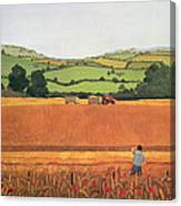 Harvesting In The Cotswolds Canvas Print