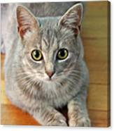 Hattie The Kitty Canvas Print